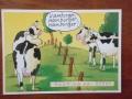 Abo, Numa ja lehmäjooga 003